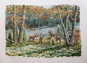 Nr.84 Leif Liljeblad litografi
